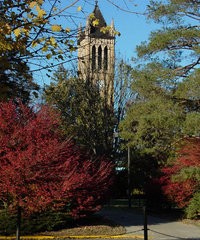 Iowa State University - Campanile in the fall